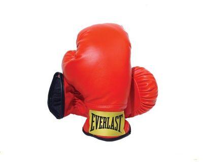 Rękawice bokserskie Everlast dla dzieci